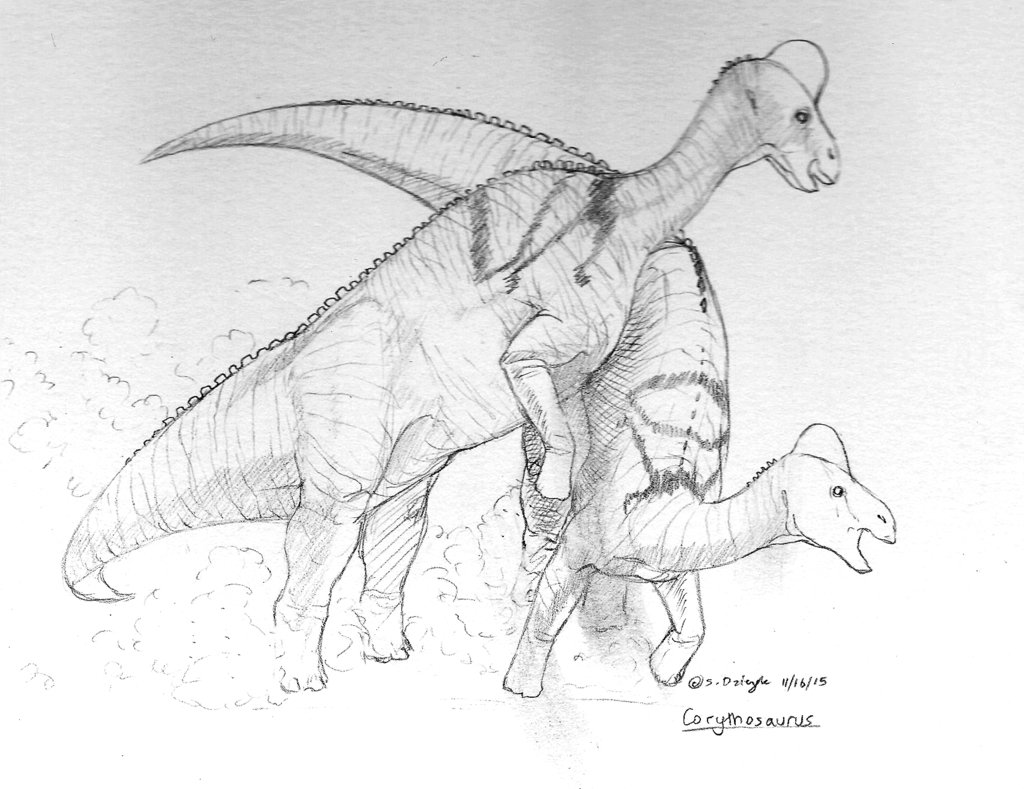 Dinovember - 15 - Corythosaurus