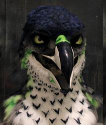 SEAHAWK mask