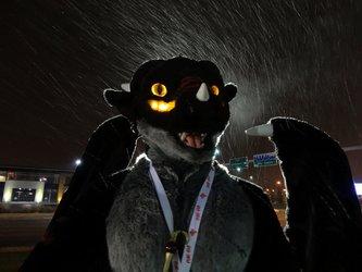 Dragon says RAWR!