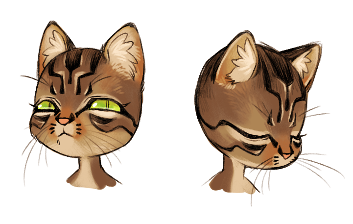 and a cat