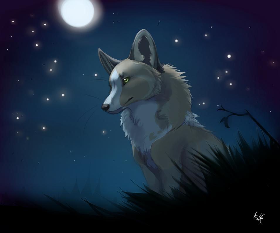 Most recent image: Kitsune moon