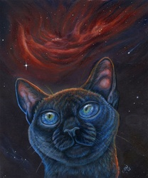 Nebular Gaze