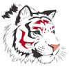 avatar of kotyz