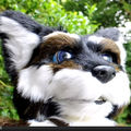 Erios - animatronic fursuit head - HD-video