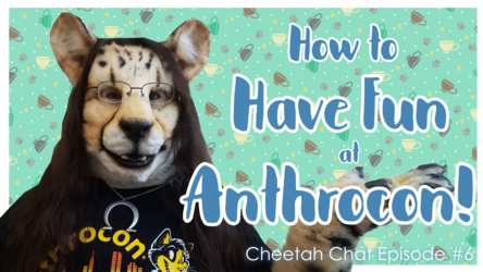 How to Have Fun at Anthrocon | Cheetah Chat #6