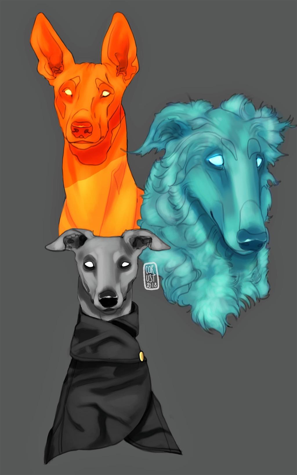 Sighthound Practice Studies