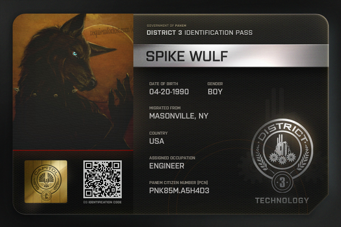 District 3 Badge