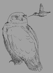 [untitled sketch 2020-01-26]