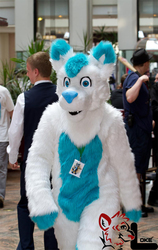 Clive at Eurofurence 17