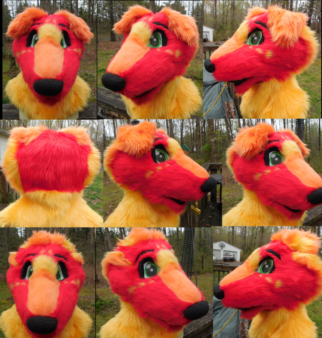 Firecracker Head Turnaround