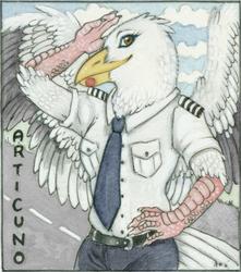 Pilot Seagull Conbadge