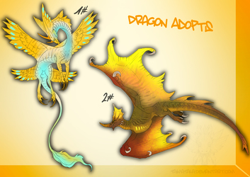 Dragon Adopts 2# -AUCTION OPEN-