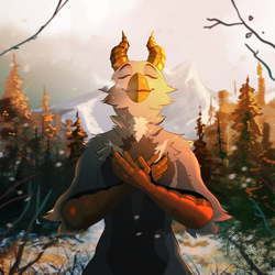 c - winter sun