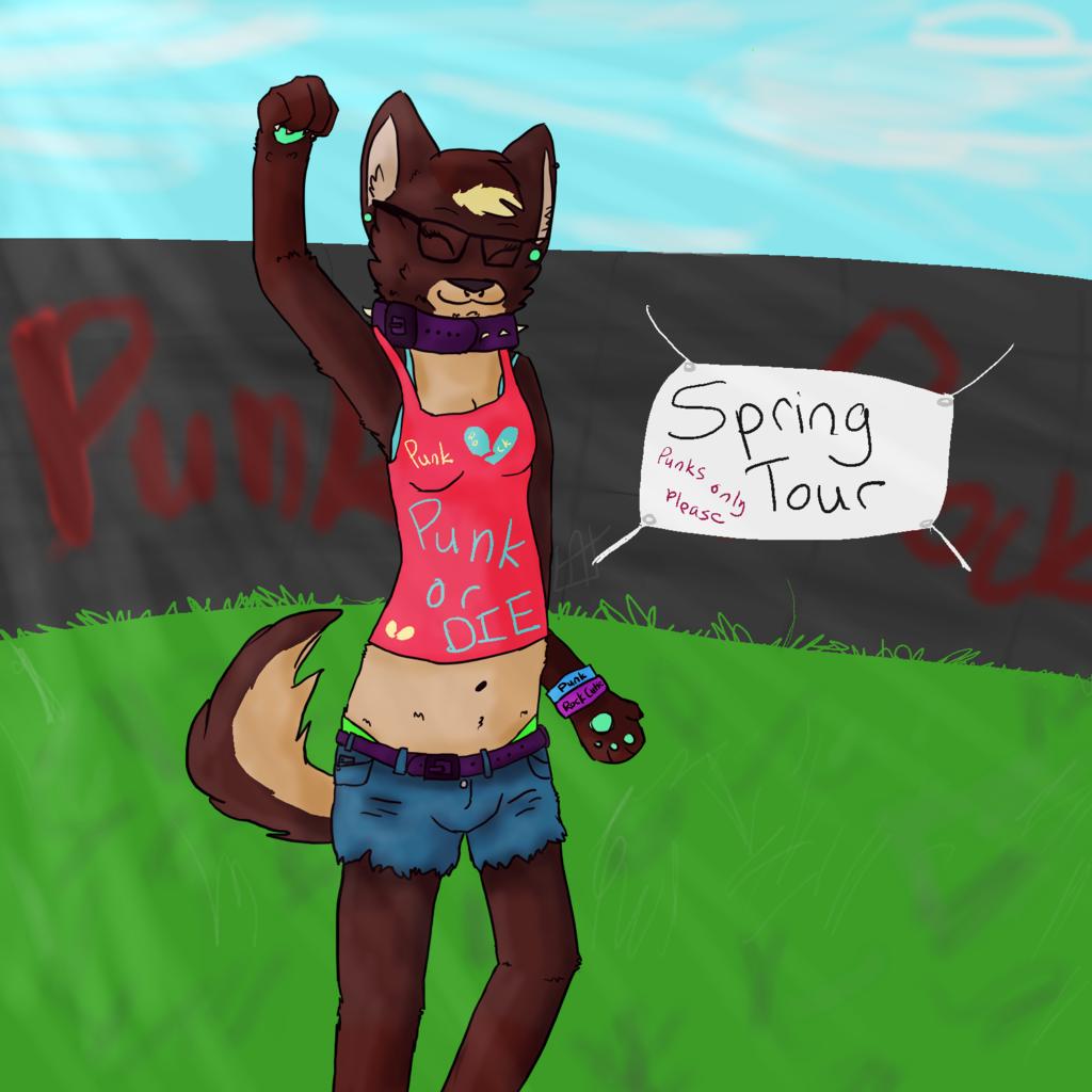 Spring Tour: Punk Rock Babe
