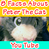 8 Facts about Peter the cat