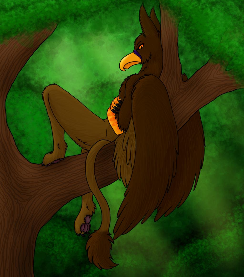 Treetop Judgemental Glare