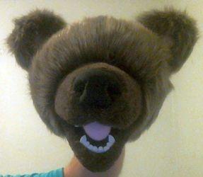 Bear Puppet 03/13/15 #1