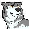 avatar of surplus