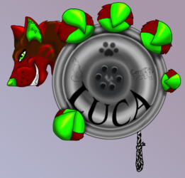 Luca yoyo badge