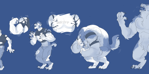 COMM: therewolf
