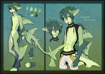 Frankie the Moss Shark