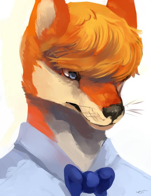 Commission: captyns