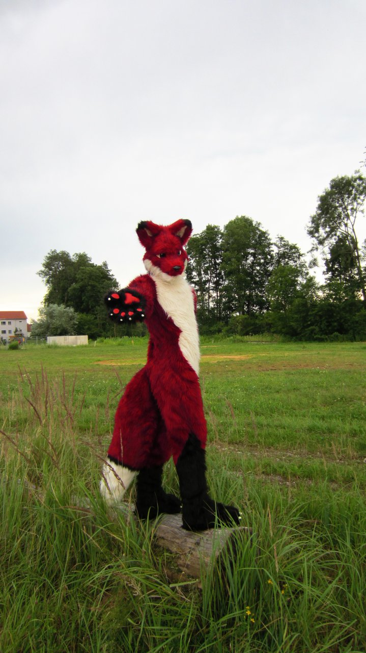 First Suit: Finished