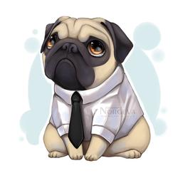 Mormon Pug