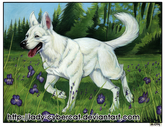 White Shepherd Painting