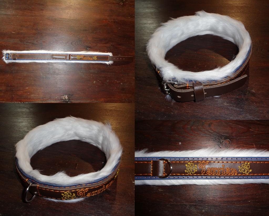 Collar for Tarrian