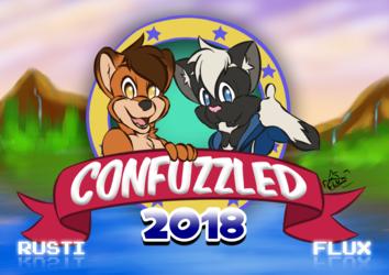 Confuzzled 2018 Door Art - Sonic Style