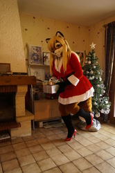 How the vixen stole Christmas !