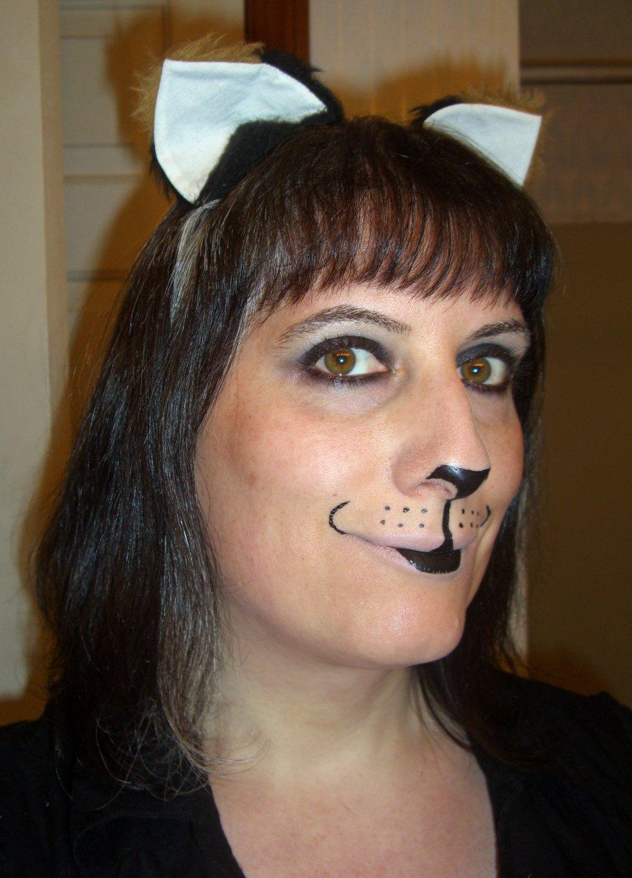 Simple kitty makeup 4/27/2012