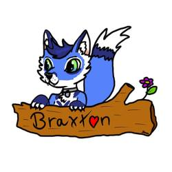 Braxton Badge by StormtheDevil