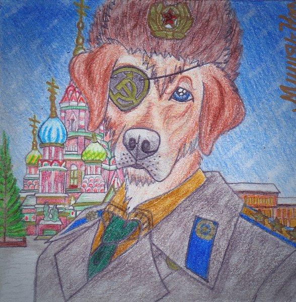 A Beautiful Russian Winter