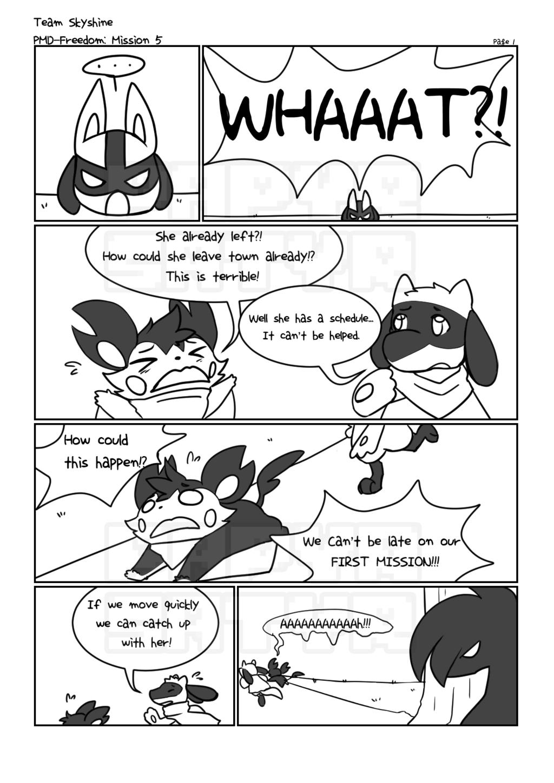 Team Skyshine's first mission