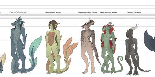 Personal - Original Species Size Chart