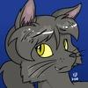 Avatar for KittyBones