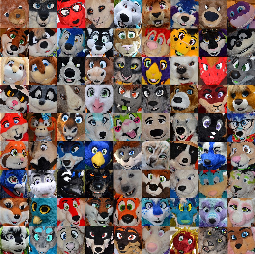 The Faces of Confuzzled 2015