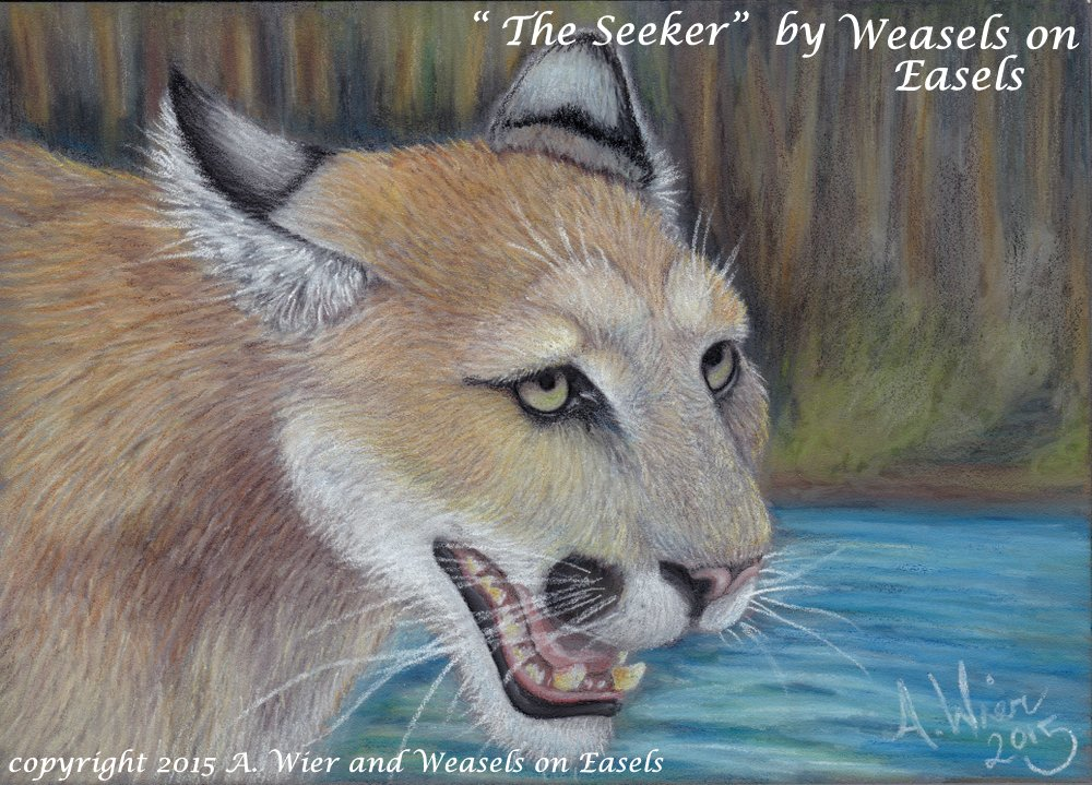 Featured image: The Seeker - By A. Wier