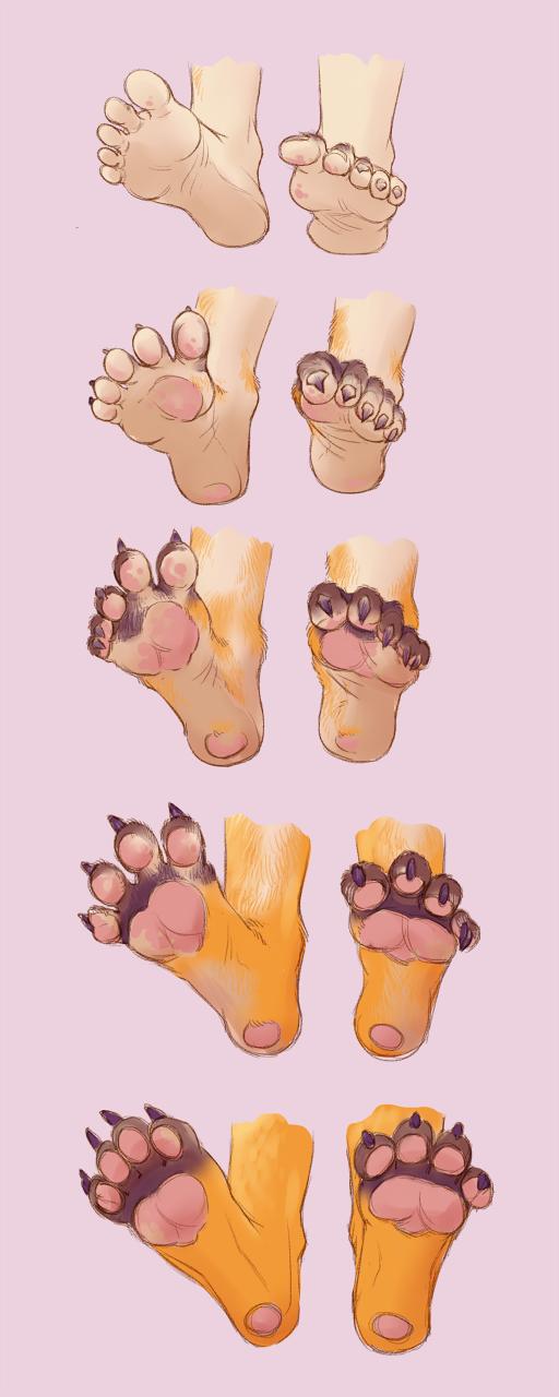 Feets to Peets