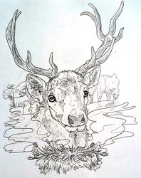 Elk WIP