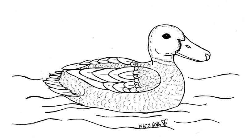 Featured image: Mallard Inks