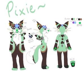 pixie ref