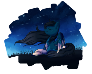 Relaxing under the stars