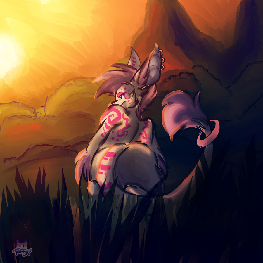 Most recent image: Sunset Stalker