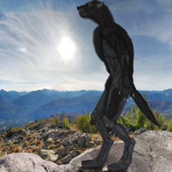 Lycan standing on rocks