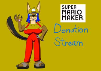 Super Mario Maker donation stream