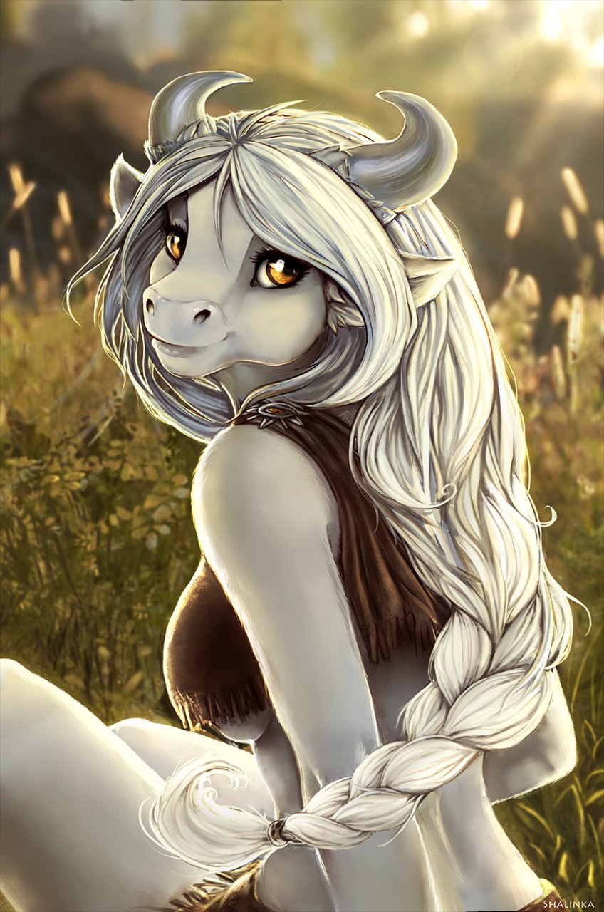 Sunny meadow.