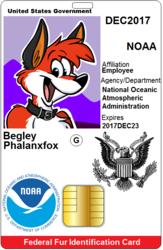 Federal Fur ID Card